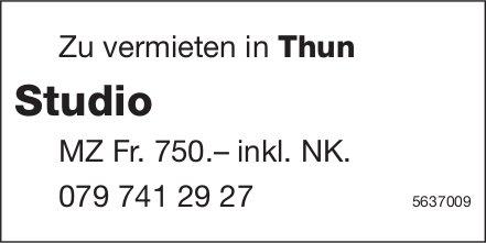 Studio in Thun zu vermieten