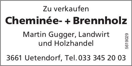 Cheminée- + Brennholz zu verkaufen - Martin Gugger, Landwirt und Holzhandel, Uetendorf