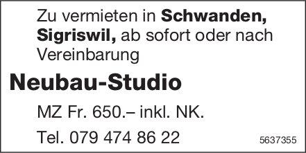 Neubau-Studio in Schwanden, Sigriswil, zu vermieten