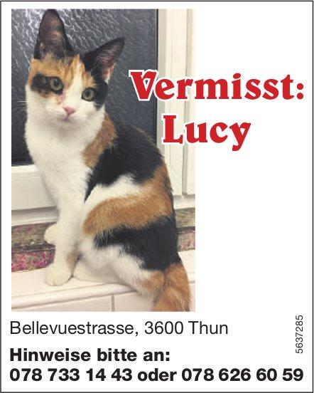 Vermisst: Lucy