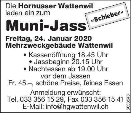 Hornusser Wattenwil - Muni-Jass am 24. Januar