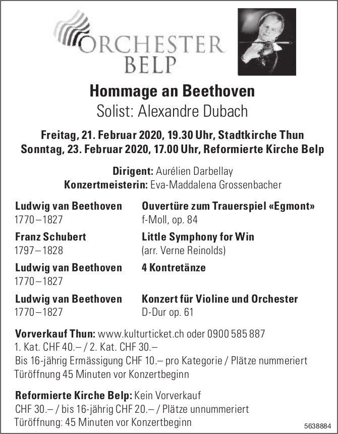 Hommage an Beethoven 21. + 23. Februar, Orchester Belp