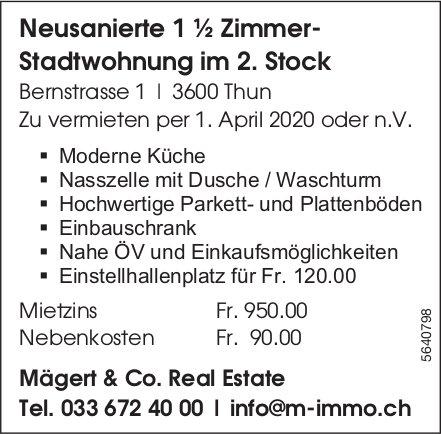 Neusanierte 1 ½ Zimmer-Stadtwohnung in Thun zu vermieten