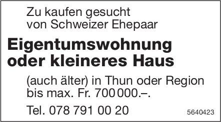 Eigentumswohnung oder kleineres Haus in Thun oder Region zu kaufen gesucht