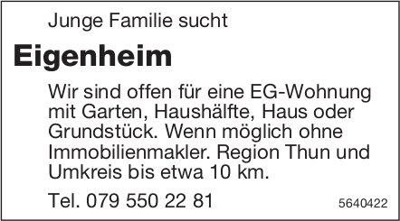 Junge Familie sucht Eigenheim Region Thun und Umkreis bis etwa 10 km.