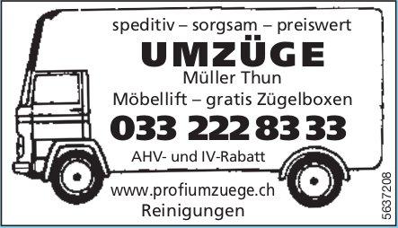Müller Thun - Speditiv,sorgsam, preiswert Umzüge