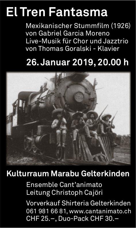 El Tren Fantasma,26. Januar, Kulturraum Marabu, Gelterkinden