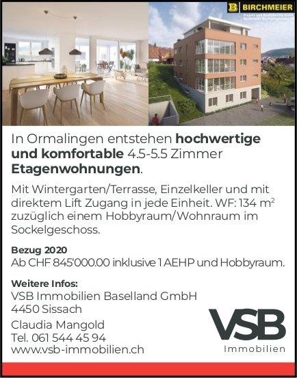 4.5- bis 5.5- Zimmer-Etagenwohnungen, Ormalingen, zu verkaufen