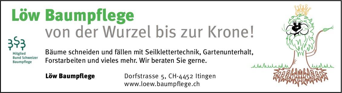 Löw Baumpflege, Itingen