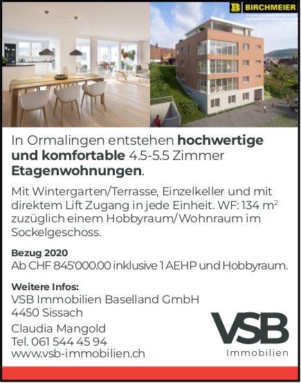 4.5- bis 5.5 Zimmer-Wohnungen, Ormalingen, zu verkaufen