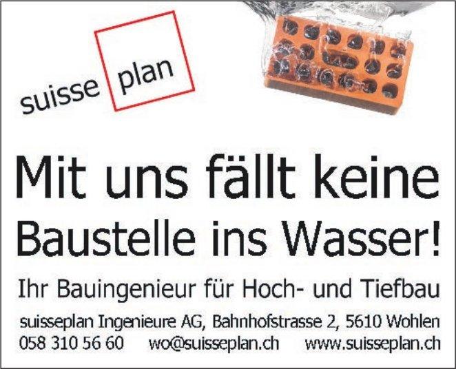 suissedan Ingeniemre AG - Mit uns fällt keine Baustelle ins Wasser!
