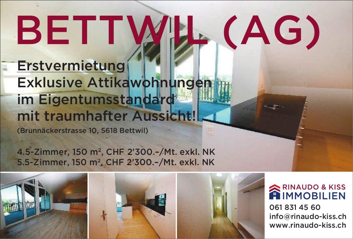 Erstvermietung Exklusive Attikawohnungen im Eigentumsstandard in Bettwil