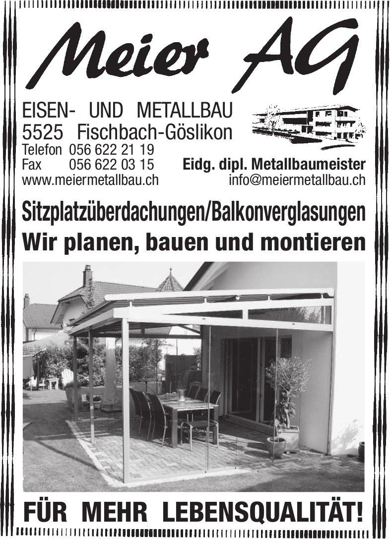 Meier AG, Eisen- und Metallbau - Wir planen, bauen und montieren