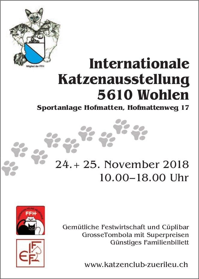 Internationale Katzenausstellung, 24. + 25. Nov., Sportanlage Hofmatten