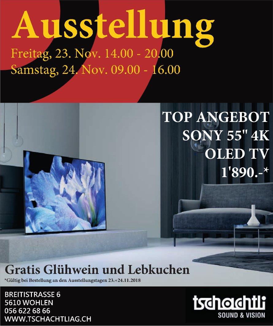 Ausstellung, 23./24. Nov., Tschachtli AG