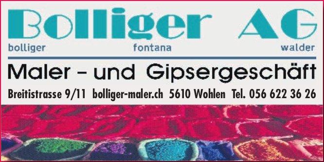 Bolliger AG - Maler- und Gipsergeschäft