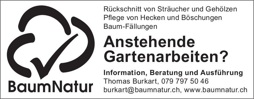 BaumNatur - Information und Beratung