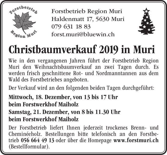 Christbaumverkauf 2019 in Muri