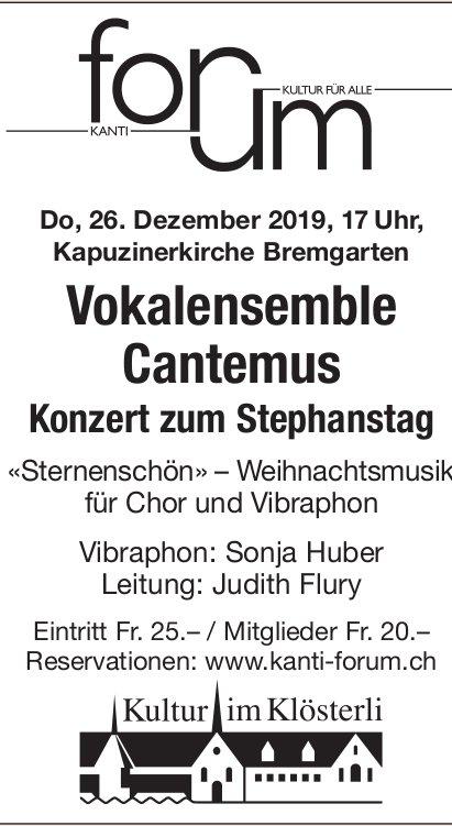 Vokalensemble Cantemus - Konzert am 26. Dezember in Bremgarten