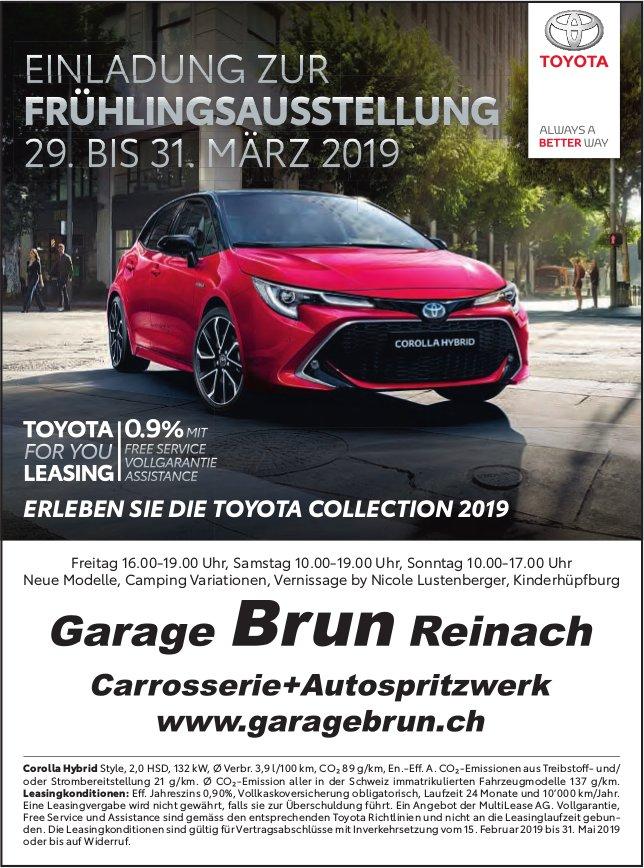 FRÜHLINGSAUSSTELLUNG, 29. - 31. März, Garage Brun, Reinach