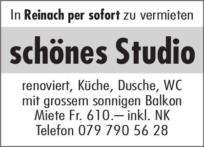 Schönes Studio, Reinach, zu vermieten
