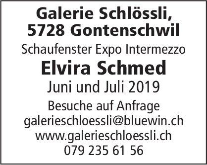 Schaufenster Expo Intermezzo, Elvira Schmed, Juni und Juli 2019, Galerie Schlössli, Gontenschwil
